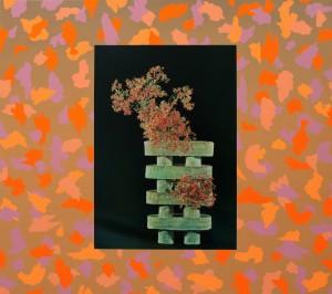 Anna Kristensen Christmas Bush Paintings and Sculptures OK Gallery